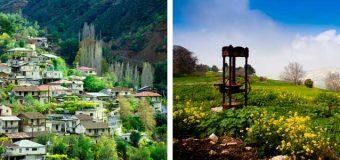 Весна на Кипре!