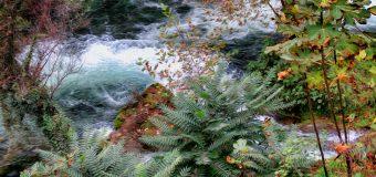 Осень — бархатный сезон отпусков! Проведите его на море, в Анталии!