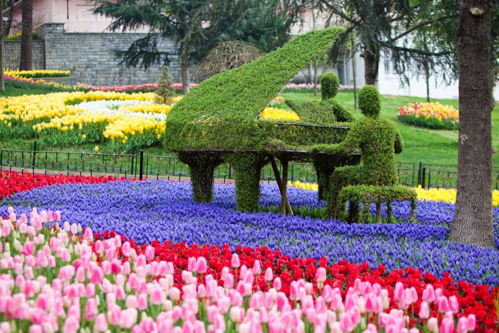 the-tulip-festival-in-istanbul2