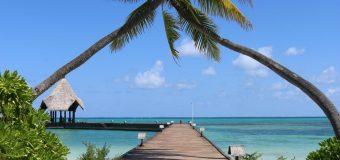 Тропический рай по самым доступным ценам для всей семьи!